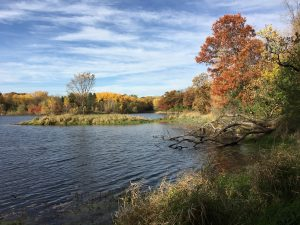 Leb Hills Fall 2017